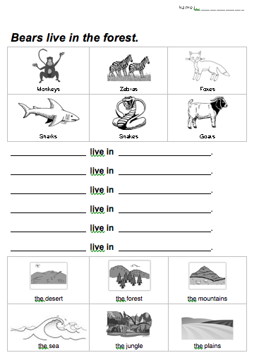 Bears live in the forest: Animal Habitats Worksheet (Beginner ESL/EFL)